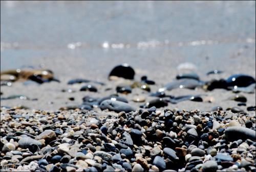 hervé hamon,besoin de mer,mer